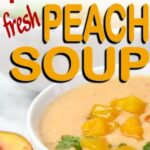 easy blender plant based fresh peach soup bowl of soup with fresh peaches chopped and slices nearby